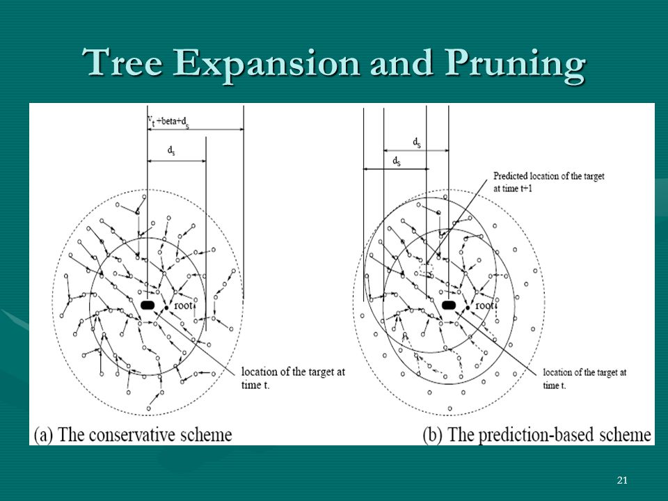 21 Tree Expansion and Pruning