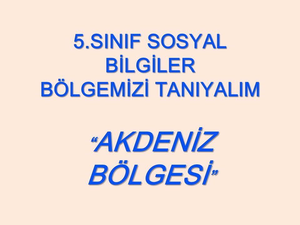 Muz: Mersin ve Anamur çevresinde yetiştirilir.Türkiye'de 1 sıradadır.