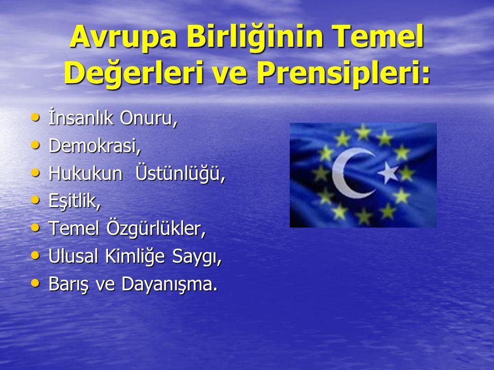 Avrupa Birliğinin Temel Değerleri ve Prensipleri: İnsanlık Onuru, Demokrasi, Hukukun Üstünlüğü, Eşitlik, Temel Özgürlükler, Ulusal Kimliğe Saygı, Barış ve Dayanışma.