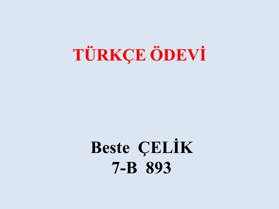 TÜRKÇE ÖDEVİ Beste ÇELİK 7-B 893