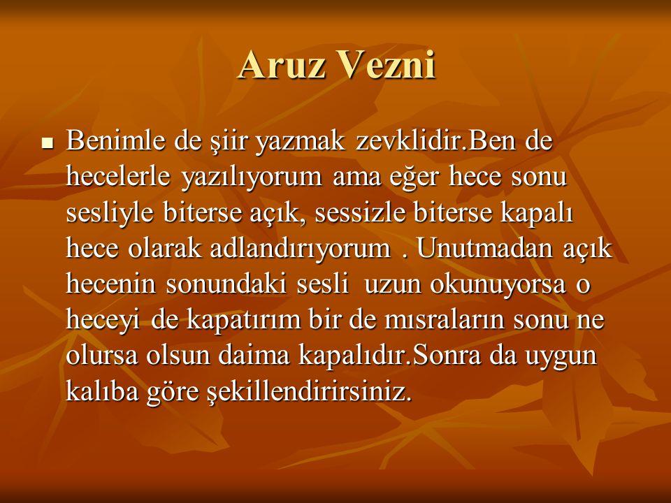 Hece Vezni Sen Türkçeye çok uygun değilsin bunun için artık seninle şiir yazan pek yok.