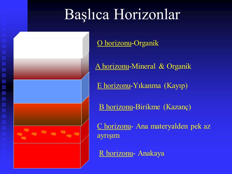 Başlıca Horizonlar O horizonu-Organik A horizonu-Mineral & Organik E horizonu-Yıkanma (Kayıp) B horizonu-Birikme (Kazanç) C horizonu- Ana materyalden