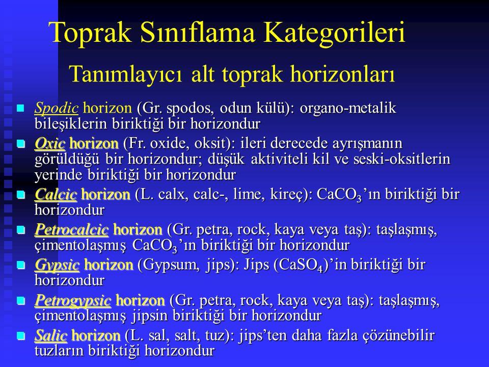 Toprak Sınıflama Kategorileri (Gr. spodos, odun külü): organo-metalik bileşiklerin biriktiği bir horizondur n Spodic horizon (Gr. spodos, odun külü):