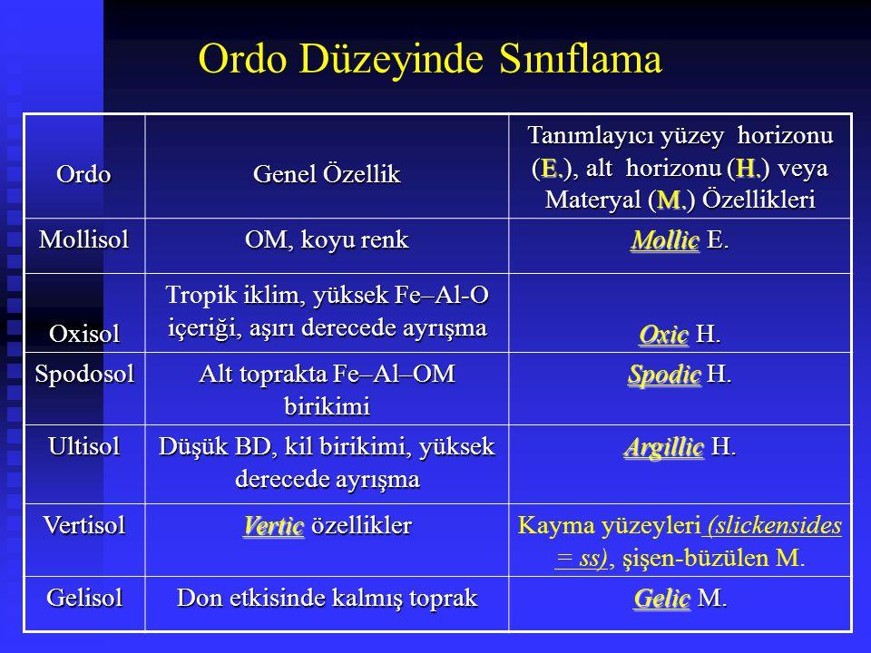 Ordo Genel Özellik Tanımlayıcı yüzey horizonu (E.), alt horizonu (H.) veya Materyal (M.) Özellikleri Mollisol OM, koyu renk Mollic E. Oxisol iklim, yü