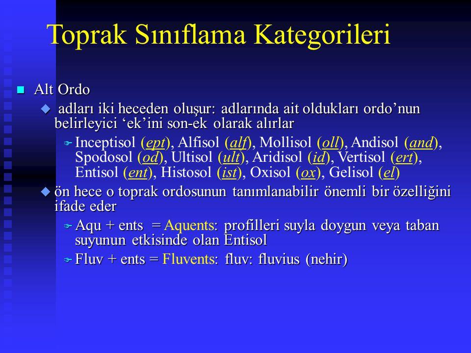 Toprak Sınıflama Kategorileri n Alt Ordo u adları iki heceden oluşur: adlarında ait oldukları ordo'nun belirleyici 'ek'ini son-ek olarak alırlar F Inc