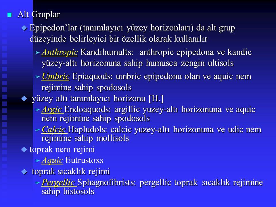 n Alt Gruplar u Epipedon'lar (tanımlayıcı yüzey horizonları) da alt grup düzeyinde belirleyici bir özellik olarak kullanılır Kandihumults: anthropic e
