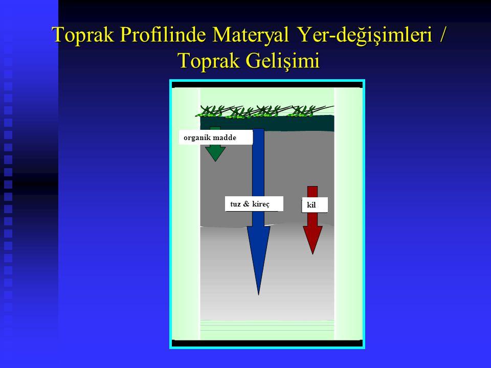 Toprak Profilinde Materyal Yer-değişimleri / Toprak Gelişimi organik madde tuz & kireç kil