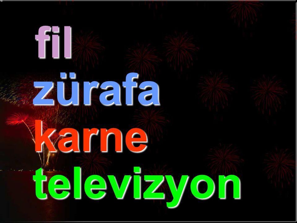 fil zürafa karne televizyon