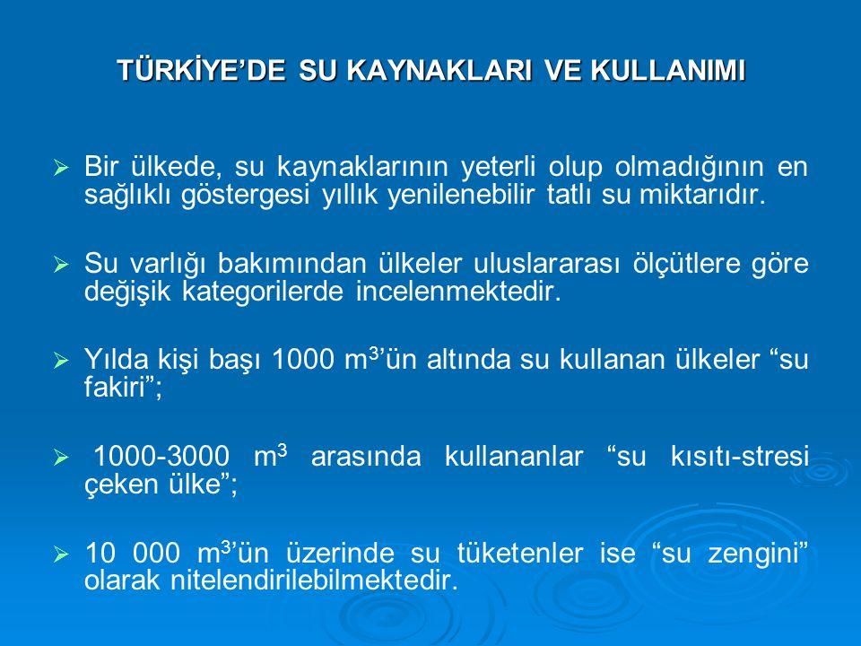 TÜRKİYE'DE SU KAYNAKLARI YÖNETİMİNE İLİŞKİN SORUNLAR   Türkiye'de su kaynaklarının korunması ve kullanılmasında kurumsal bir koordinasyon bulunmamaktadır.