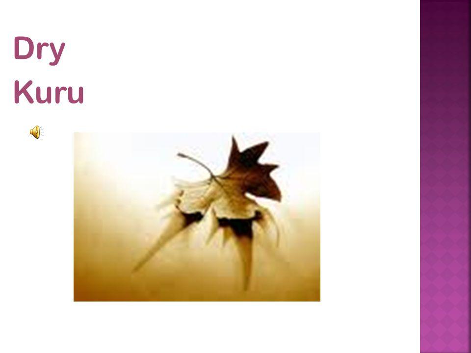 Dry Kuru