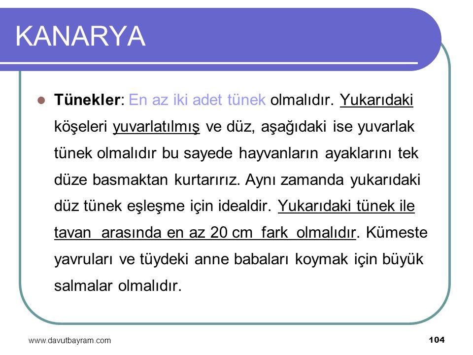 www.davutbayram.com 104 KANARYA Tünekler: En az iki adet tünek olmalıdır. Yukarıdaki köşeleri yuvarlatılmış ve düz, aşağıdaki ise yuvarlak tünek olmal