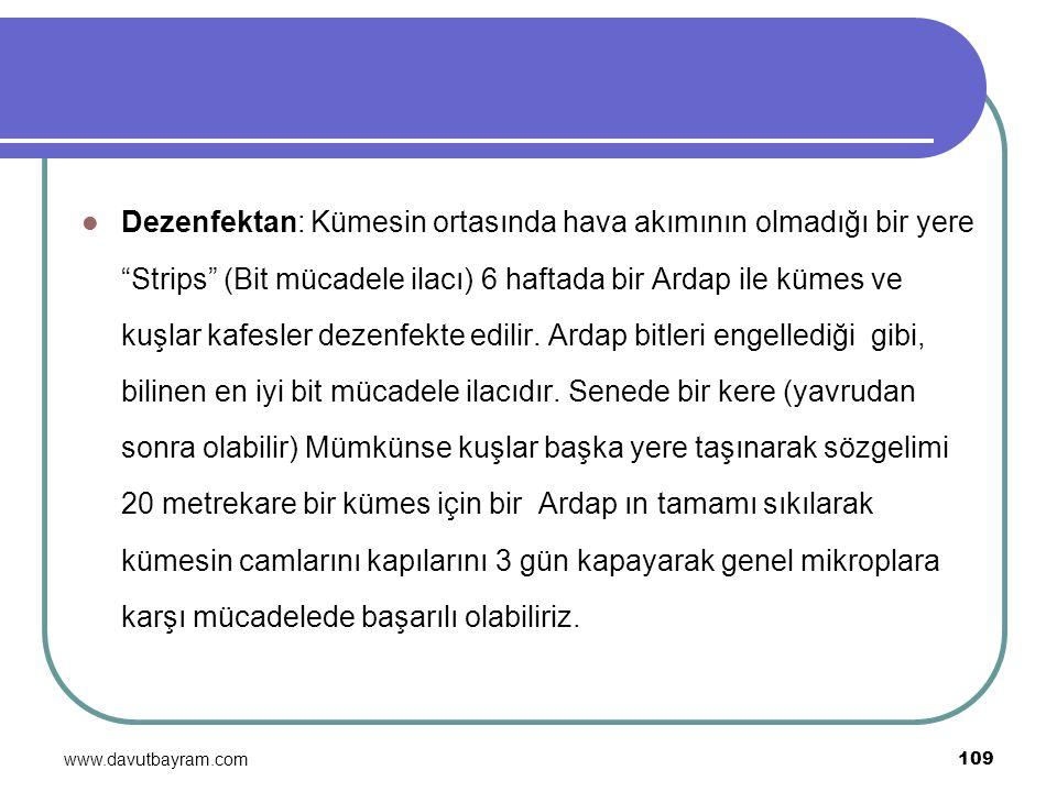 """www.davutbayram.com 109 Dezenfektan: Kümesin ortasında hava akımının olmadığı bir yere """"Strips"""" (Bit mücadele ilacı) 6 haftada bir Ardap ile kümes ve"""