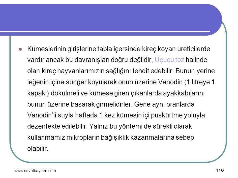 www.davutbayram.com 110 Kümeslerinin girişlerine tabla içersinde kireç koyan üreticilerde vardır ancak bu davranışları doğru değildir, Uçucu toz halin