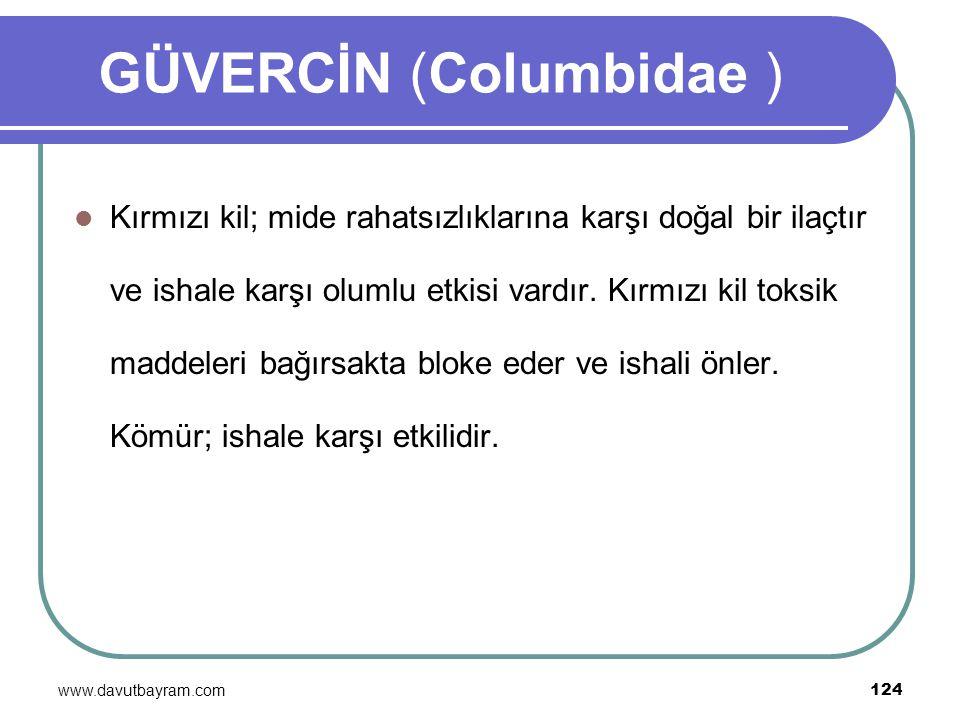 www.davutbayram.com 124 GÜVERCİN (Columbidae ) Kırmızı kil; mide rahatsızlıklarına karşı doğal bir ilaçtır ve ishale karşı olumlu etkisi vardır. Kırmı