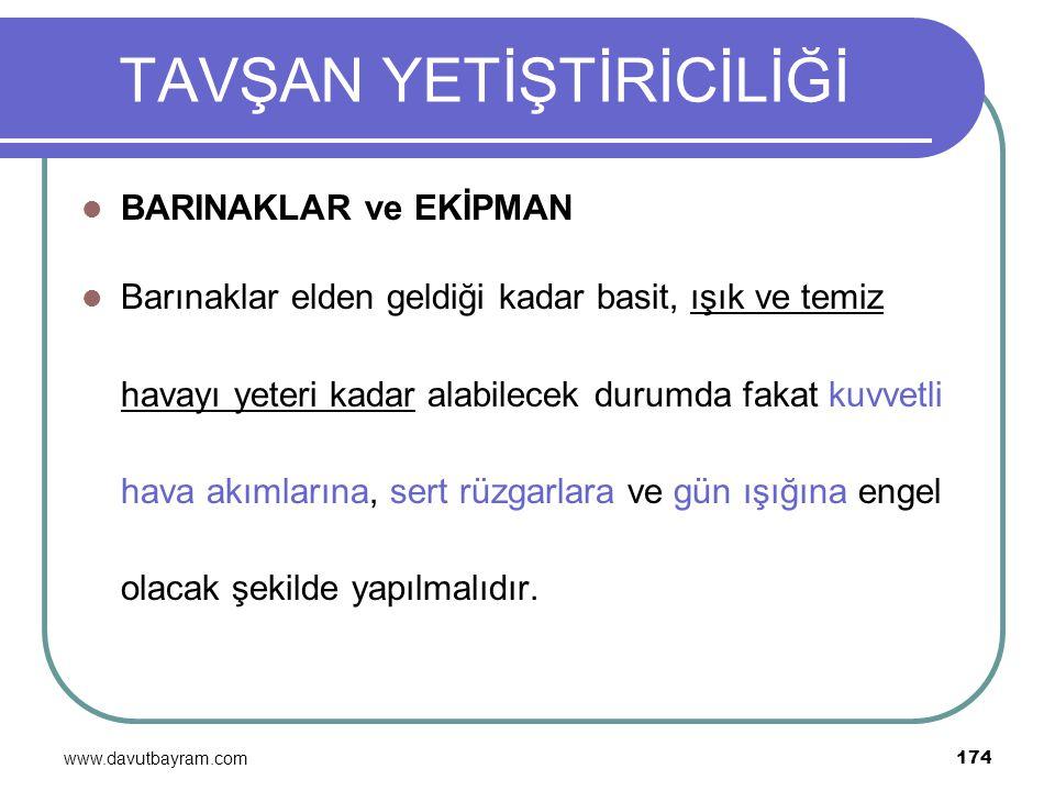 www.davutbayram.com 174 TAVŞAN YETİŞTİRİCİLİĞİ BARINAKLAR ve EKİPMAN Barınaklar elden geldiği kadar basit, ışık ve temiz havayı yeteri kadar alabilece