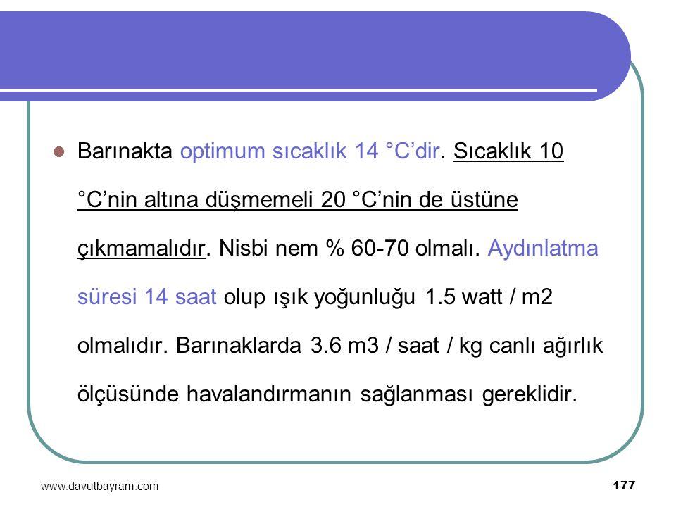 www.davutbayram.com 177 Barınakta optimum sıcaklık 14 °C'dir. Sıcaklık 10 °C'nin altına düşmemeli 20 °C'nin de üstüne çıkmamalıdır. Nisbi nem % 60-70