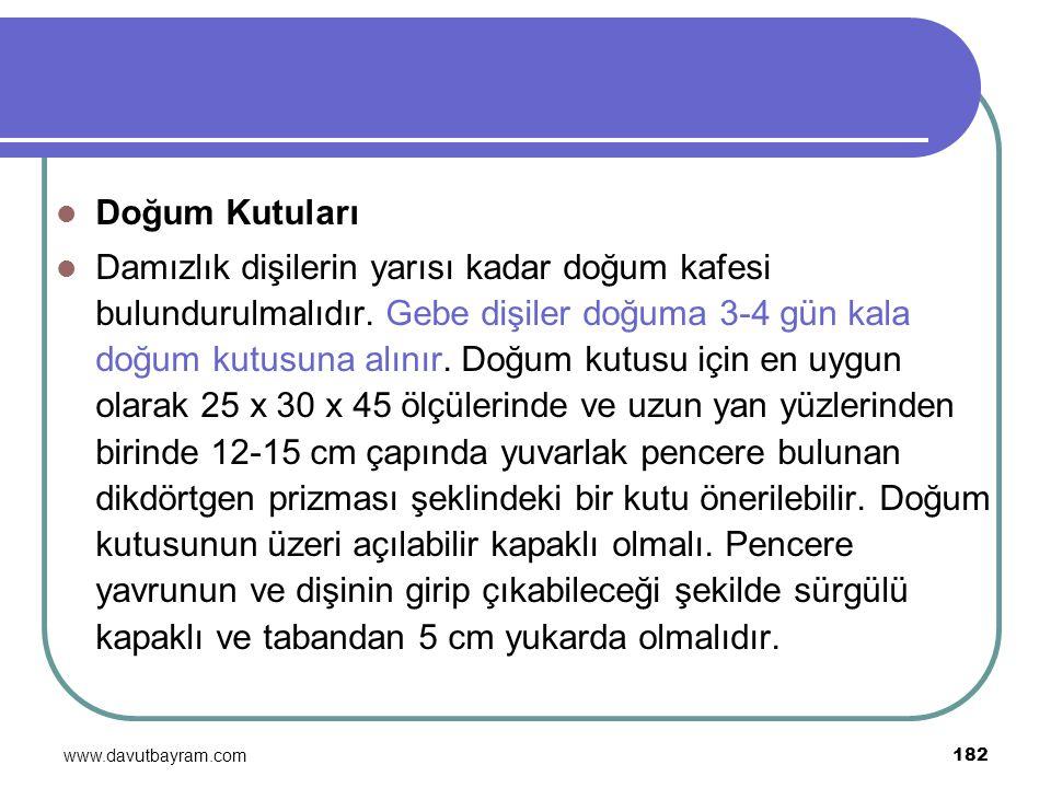 www.davutbayram.com 182 Doğum Kutuları Damızlık dişilerin yarısı kadar doğum kafesi bulundurulmalıdır. Gebe dişiler doğuma 3-4 gün kala doğum kutusuna