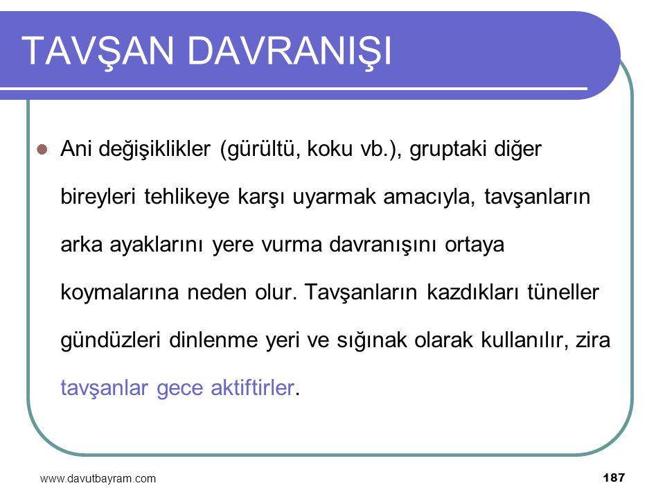 www.davutbayram.com 187 TAVŞAN DAVRANIŞI Ani değişiklikler (gürültü, koku vb.), gruptaki diğer bireyleri tehlikeye karşı uyarmak amacıyla, tavşanların