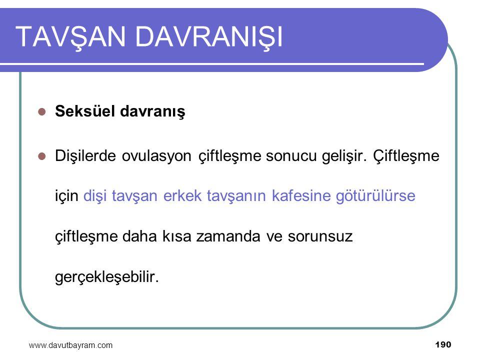 www.davutbayram.com 190 TAVŞAN DAVRANIŞI Seksüel davranış Dişilerde ovulasyon çiftleşme sonucu gelişir. Çiftleşme için dişi tavşan erkek tavşanın kafe