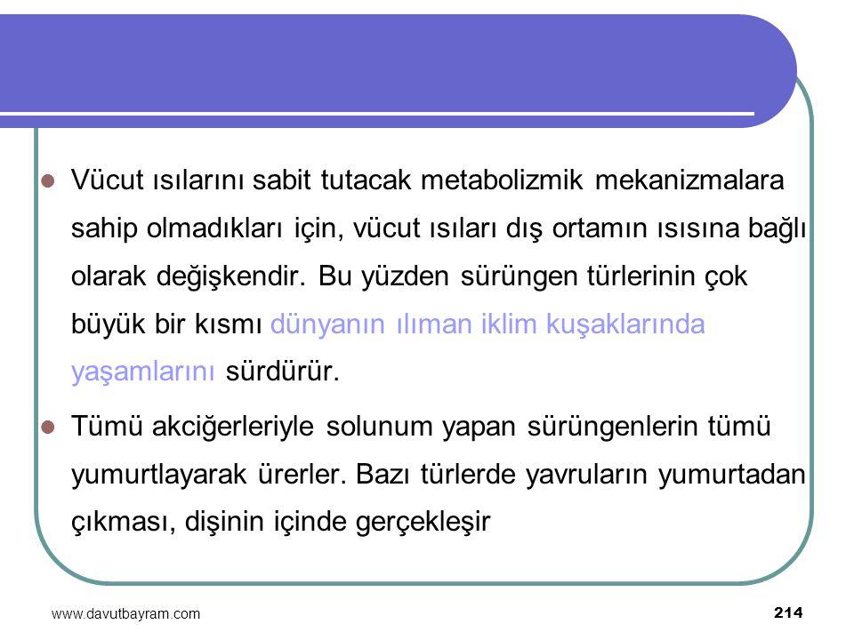 www.davutbayram.com 214 Vücut ısılarını sabit tutacak metabolizmik mekanizmalara sahip olmadıkları için, vücut ısıları dış ortamın ısısına bağlı olara