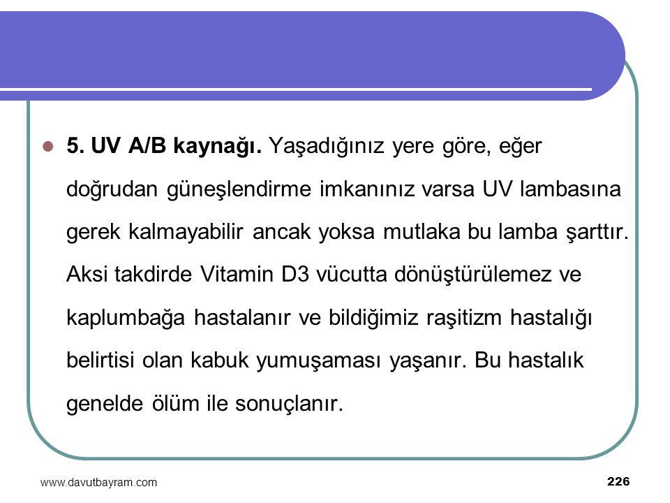 www.davutbayram.com 226 5. UV A/B kaynağı. Yaşadığınız yere göre, eğer doğrudan güneşlendirme imkanınız varsa UV lambasına gerek kalmayabilir ancak yo