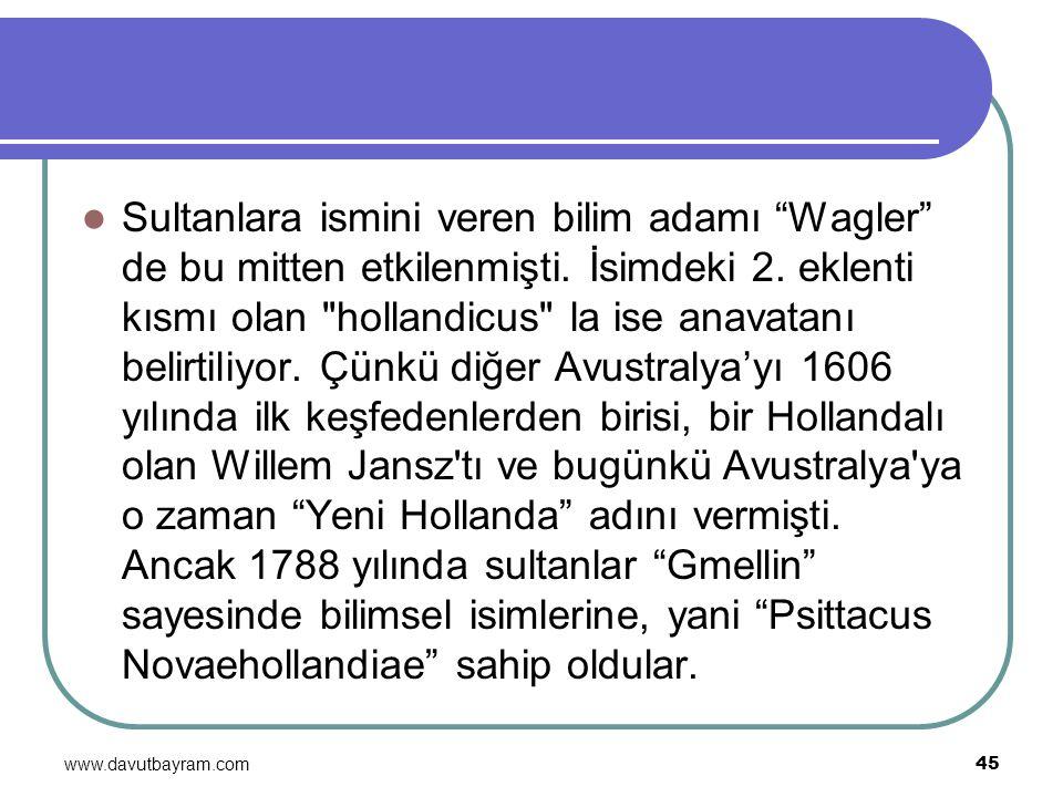 """www.davutbayram.com 45 Sultanlara ismini veren bilim adamı """"Wagler"""" de bu mitten etkilenmişti. İsimdeki 2. eklenti kısmı olan"""