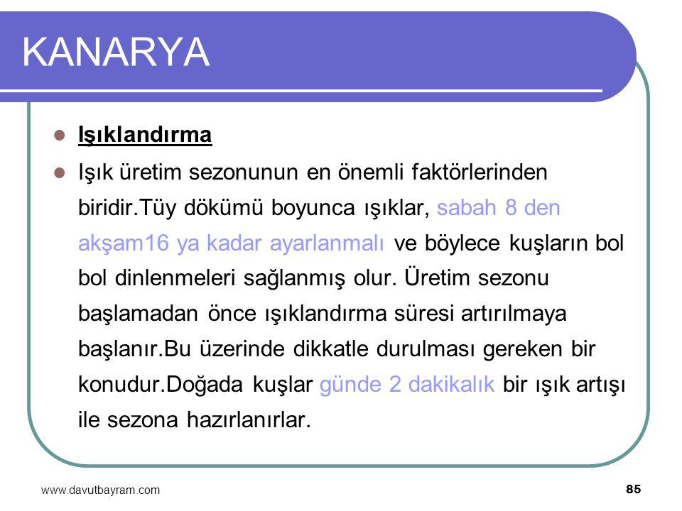 www.davutbayram.com 85 KANARYA Işıklandırma Işık üretim sezonunun en önemli faktörlerinden biridir.Tüy dökümü boyunca ışıklar, sabah 8 den akşam16 ya
