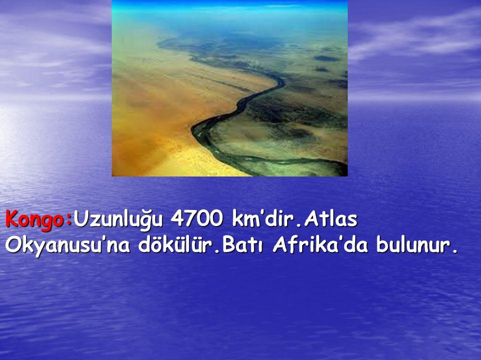 Kongo:Uzunluğu 4700 km'dir.Atlas Okyanusu'na dökülür.Batı Afrika'da bulunur.