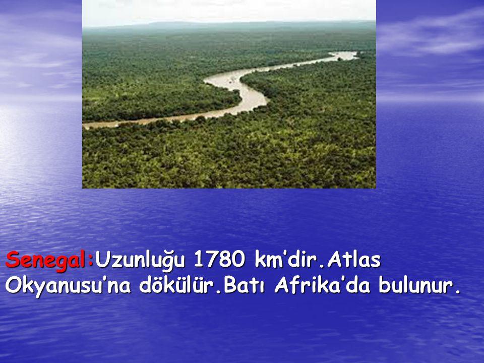 Senegal:Uzunluğu 1780 km'dir.Atlas Okyanusu'na dökülür.Batı Afrika'da bulunur.