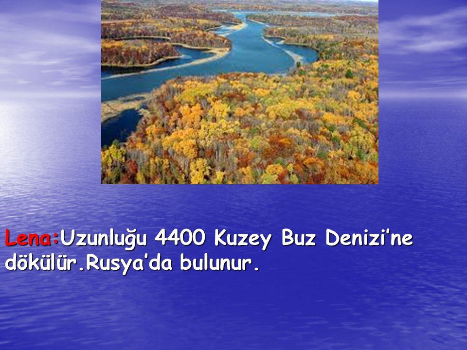 Lena:Uzunluğu 4400 Kuzey Buz Denizi'ne dökülür.Rusya'da bulunur.