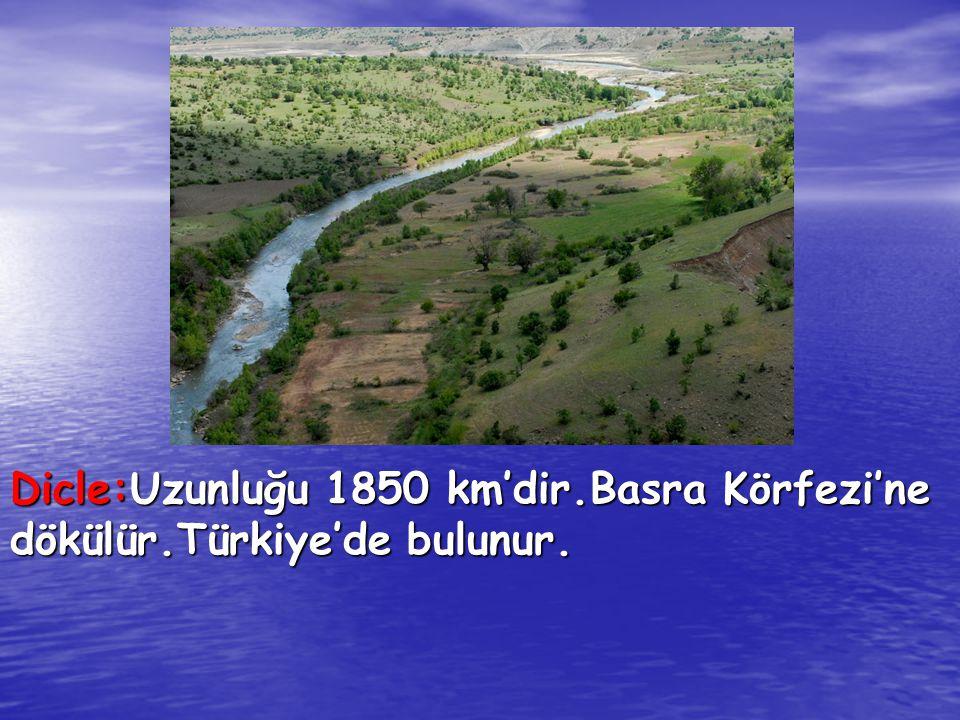 Dicle:Uzunluğu 1850 km'dir.Basra Körfezi'ne dökülür.Türkiye'de bulunur.