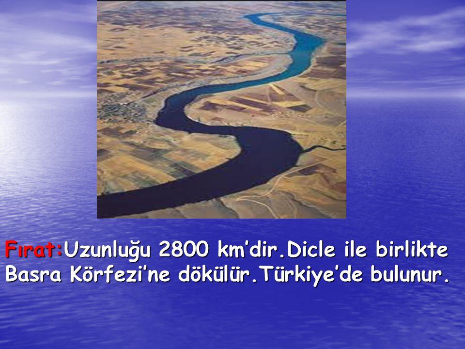 Fırat:Uzunluğu 2800 km'dir.Dicle ile birlikte Basra Körfezi'ne dökülür.Türkiye'de bulunur.