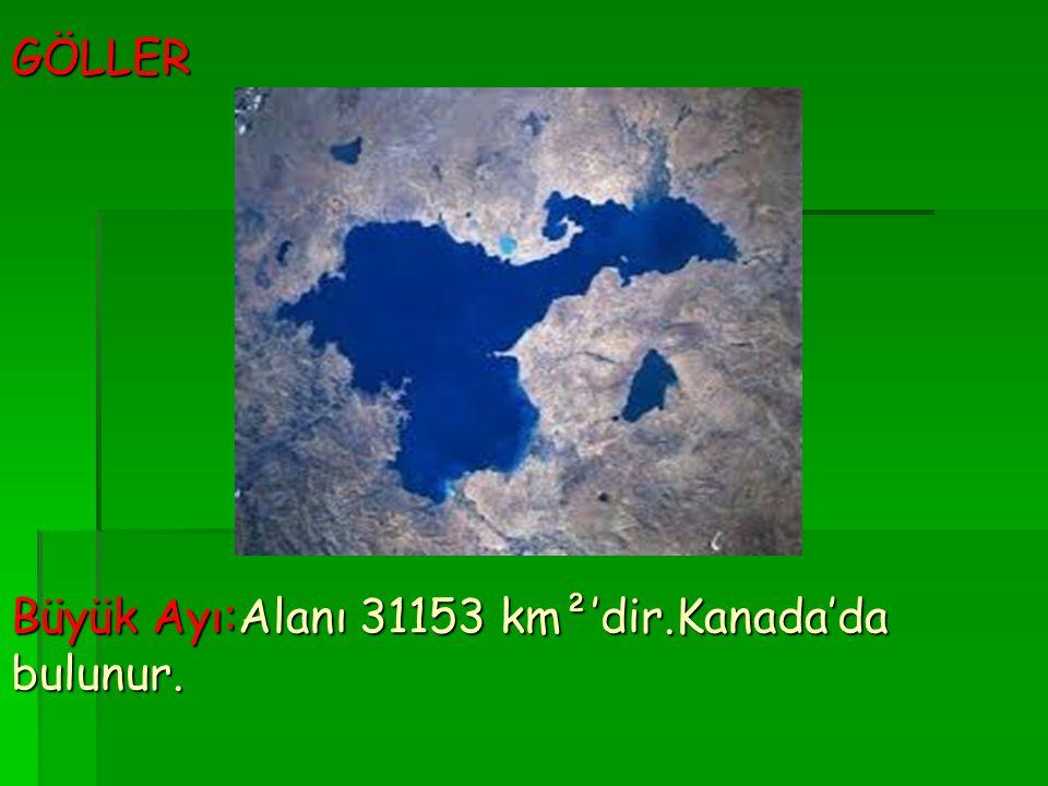 GÖLLER Büyük Ayı:Alanı 31153 km²'dir.Kanada'da bulunur.