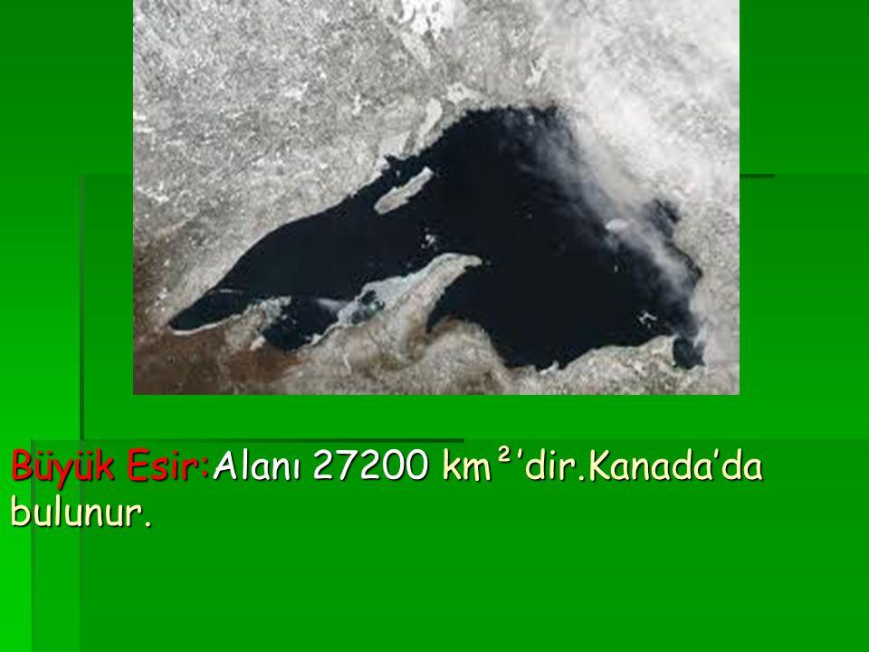 Büyük Esir:Alanı 27200 km²'dir.Kanada'da bulunur.