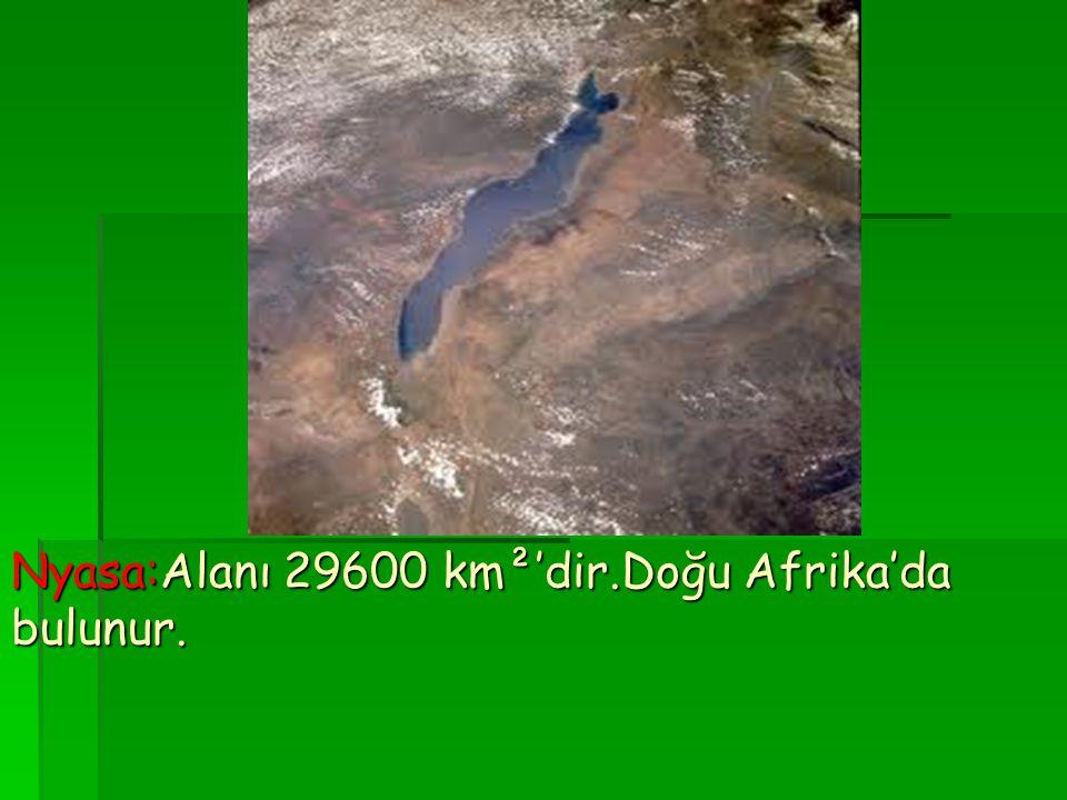 Nyasa:Alanı 29600 km²'dir.Doğu Afrika'da bulunur.