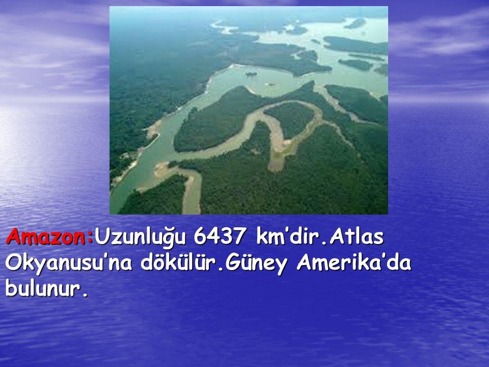 Amazon:Uzunluğu 6437 km'dir.Atlas Okyanusu'na dökülür.Güney Amerika'da bulunur.