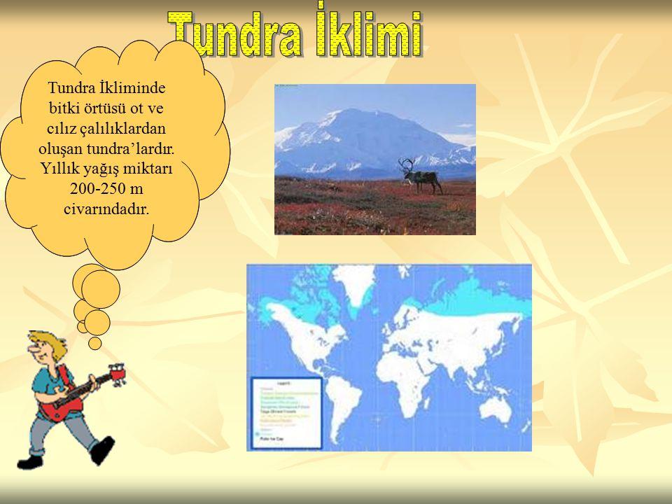 Tundra iklimi; Sibirya, İskandinavya Yarımadası'nın ve Kanada'nın kuzeyi ile, Grönland'ın kıyı kesimlerinde görülür. Tundra İkliminde bitki örtüsü ot