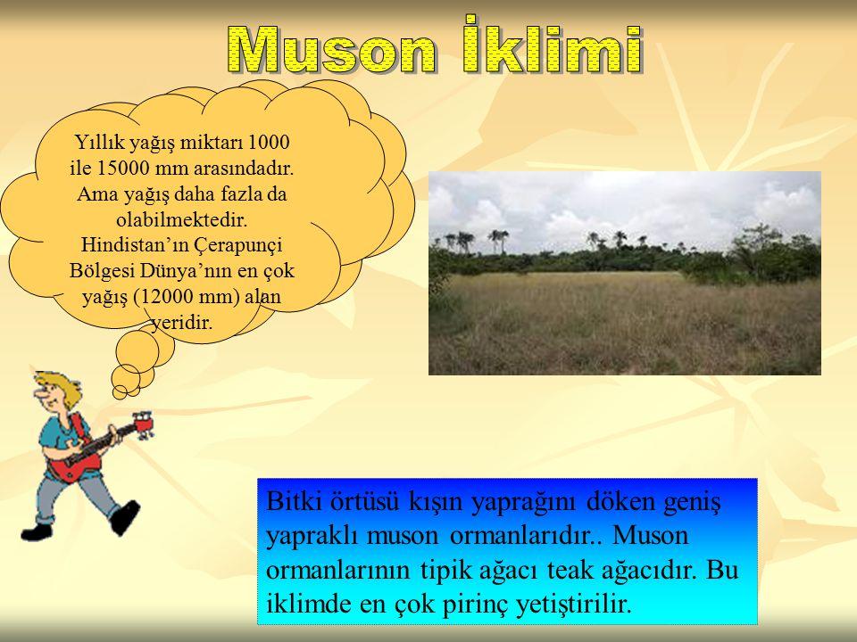 Muson iklimi; Güney, G. Doğu ve Doğu Asya'da etkili bir iklimdir. Bu iklimde yazları yağışlı, kışları kuraktır. Bu yönü ile savan iklimi ile benzerlik