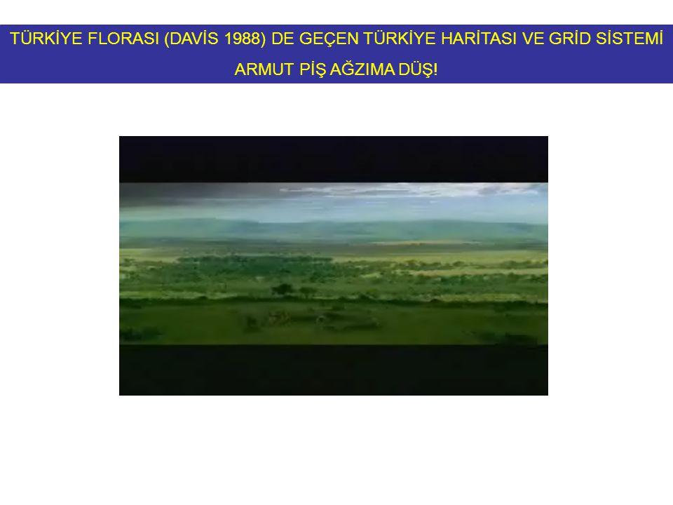 TÜRKİYE FLORASI (DAVİS 1988) DE GEÇEN TÜRKİYE HARİTASI VE GRİD SİSTEMİ ARMUT PİŞ AĞZIMA DÜŞ!