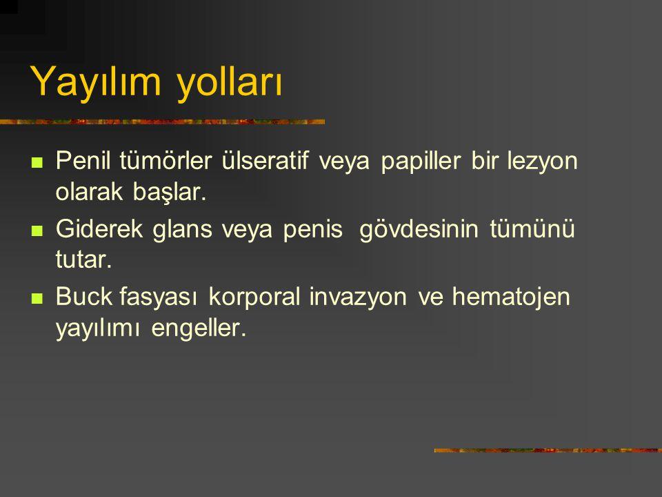 Yayılım yolları Penil tümörler ülseratif veya papiller bir lezyon olarak başlar. Giderek glans veya penis gövdesinin tümünü tutar. Buck fasyası korpor