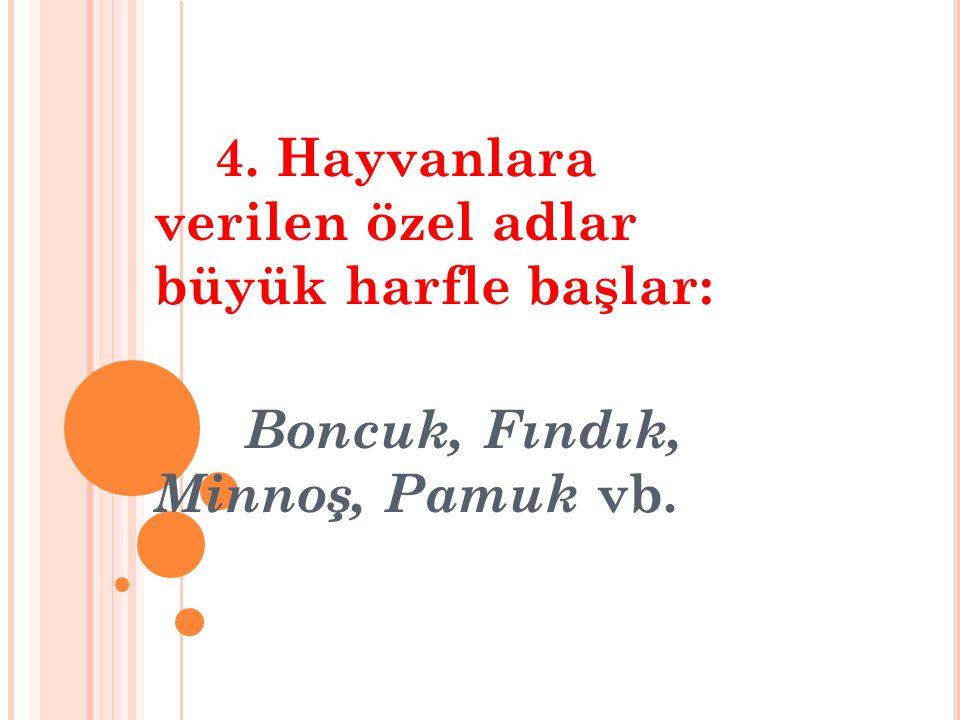 4. Hayvanlara verilen özel adlar büyük harfle başlar: Boncuk, Fındık, Minnoş, Pamuk vb.