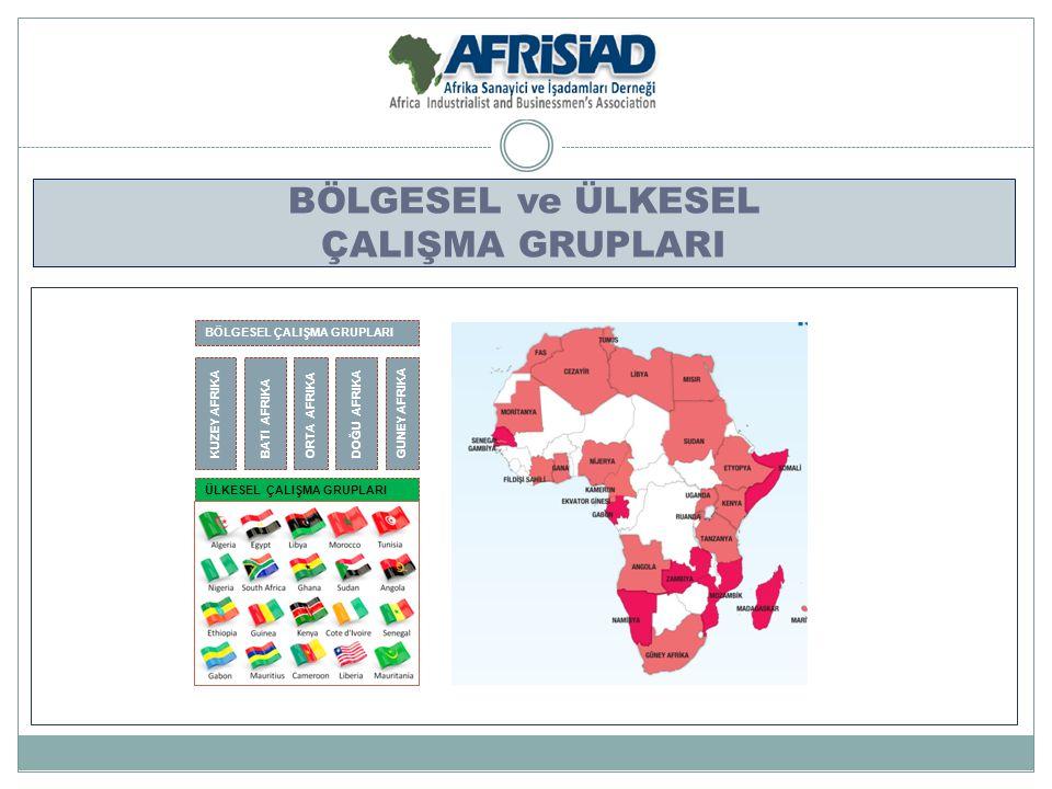 BÖLGESEL ve ÜLKESEL ÇALIŞMA GRUPLARI BÖLGESEL ÇALIŞMA GRUPLARI ÜLKESEL ÇALIŞMA GRUPLARI KUZEY AFRIKA BATI AFRIKA ORTA AFRIKA DOĞU AFRIKA GUNEY AFRIKA