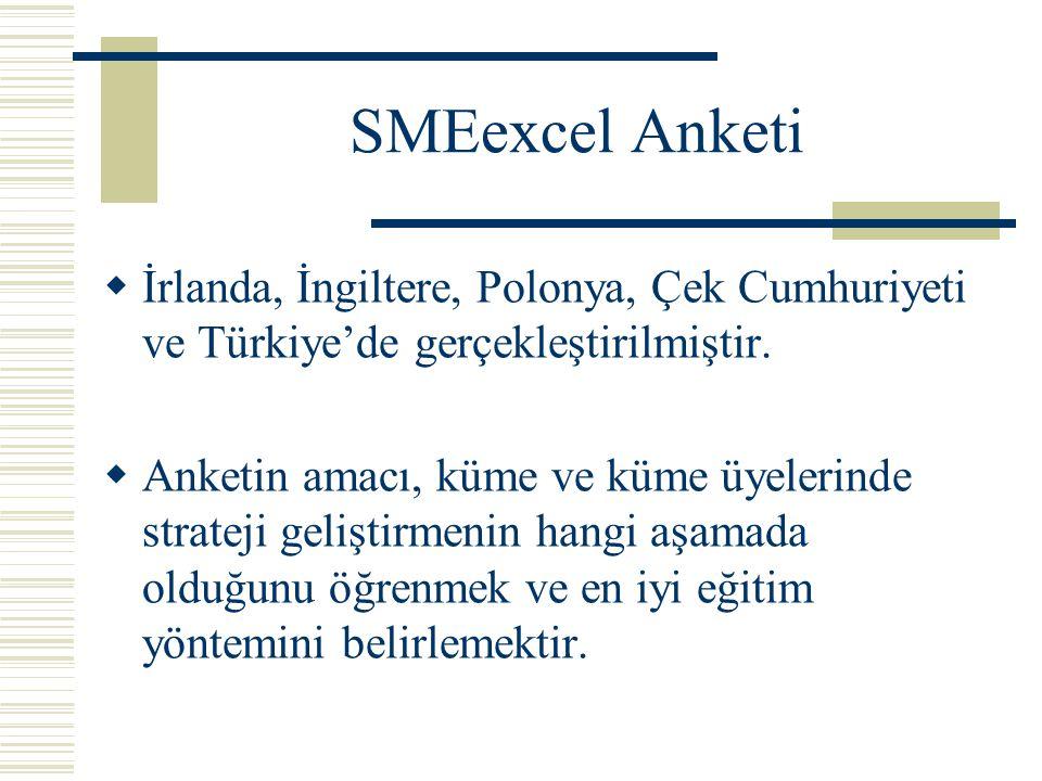 SMEexcel Anketi  İrlanda, İngiltere, Polonya, Çek Cumhuriyeti ve Türkiye'de gerçekleştirilmiştir.
