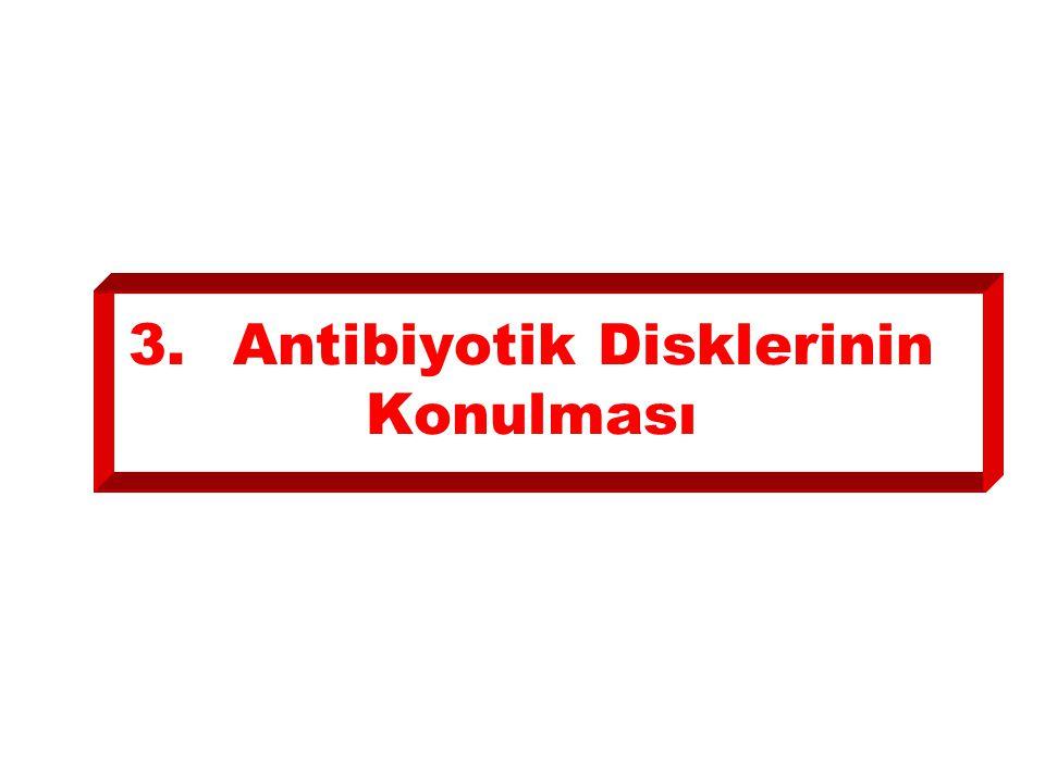 3.Antibiyotik Disklerinin Konulması