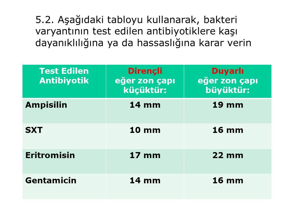5.2. Aşağıdaki tabloyu kullanarak, bakteri varyantının test edilen antibiyotiklere kaşı dayanıklılığına ya da hassaslığına karar verin Test Edilen Ant