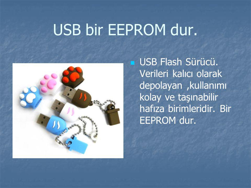 USB bir EEPROM dur.USB Flash Sürücü.