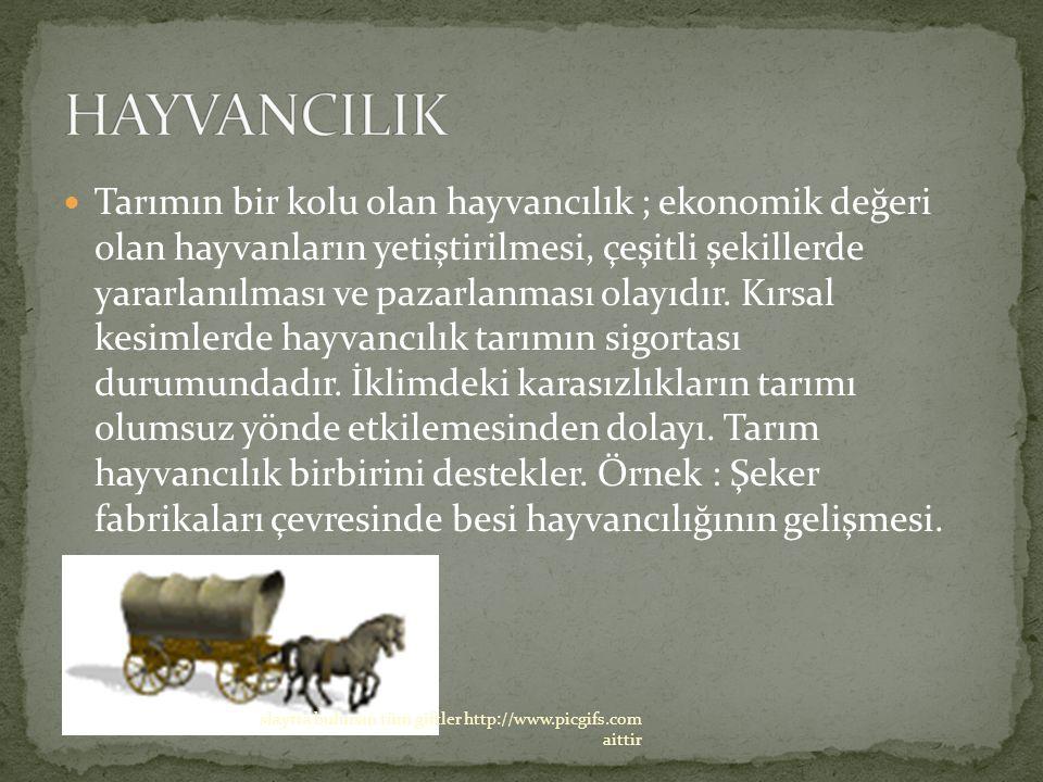 Tarımın bir kolu olan hayvancılık ; ekonomik değeri olan hayvanların yetiştirilmesi, çeşitli şekillerde yararlanılması ve pazarlanması olayıdır.