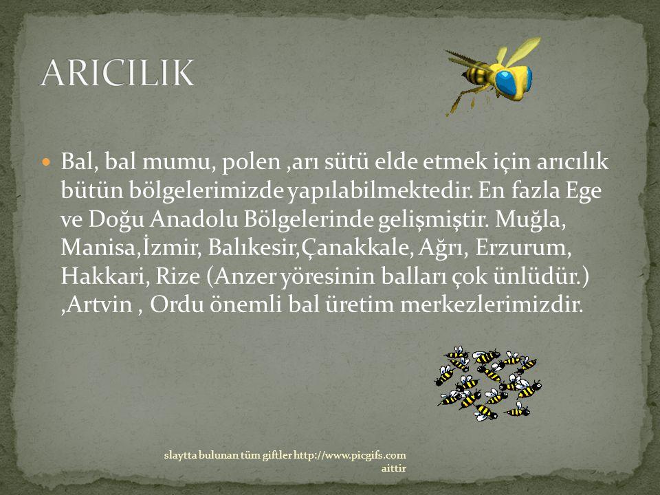 Bal, bal mumu, polen,arı sütü elde etmek için arıcılık bütün bölgelerimizde yapılabilmektedir. En fazla Ege ve Doğu Anadolu Bölgelerinde gelişmiştir.
