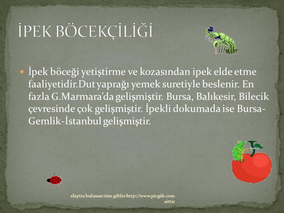 İpek böceği yetiştirme ve kozasından ipek elde etme faaliyetidir.Dut yaprağı yemek suretiyle beslenir. En fazla G.Marmara'da gelişmiştir. Bursa, Balık
