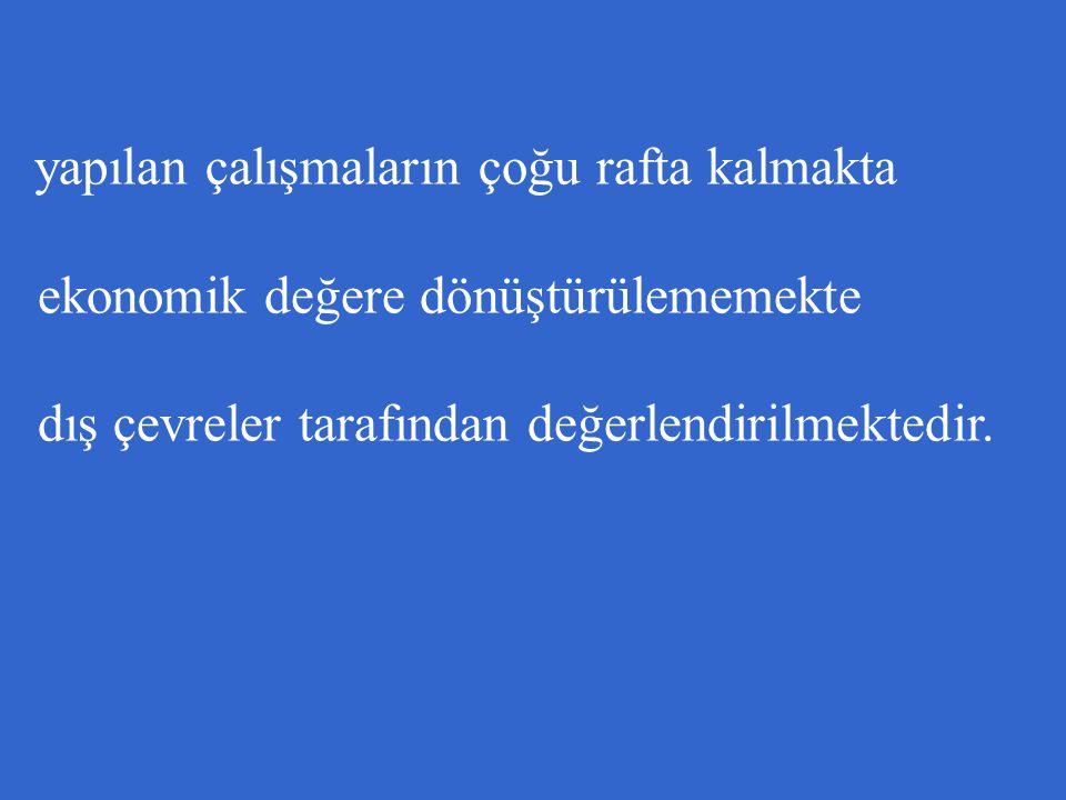 ENDÜSTRİYEL DOKTORA PROGRAMI 2004-2010